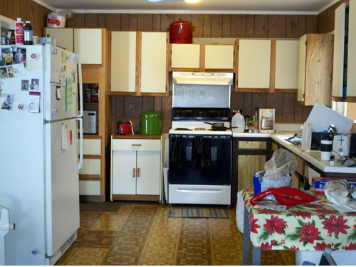 Danielle 39 S Ugly Kitchen Dig This Design