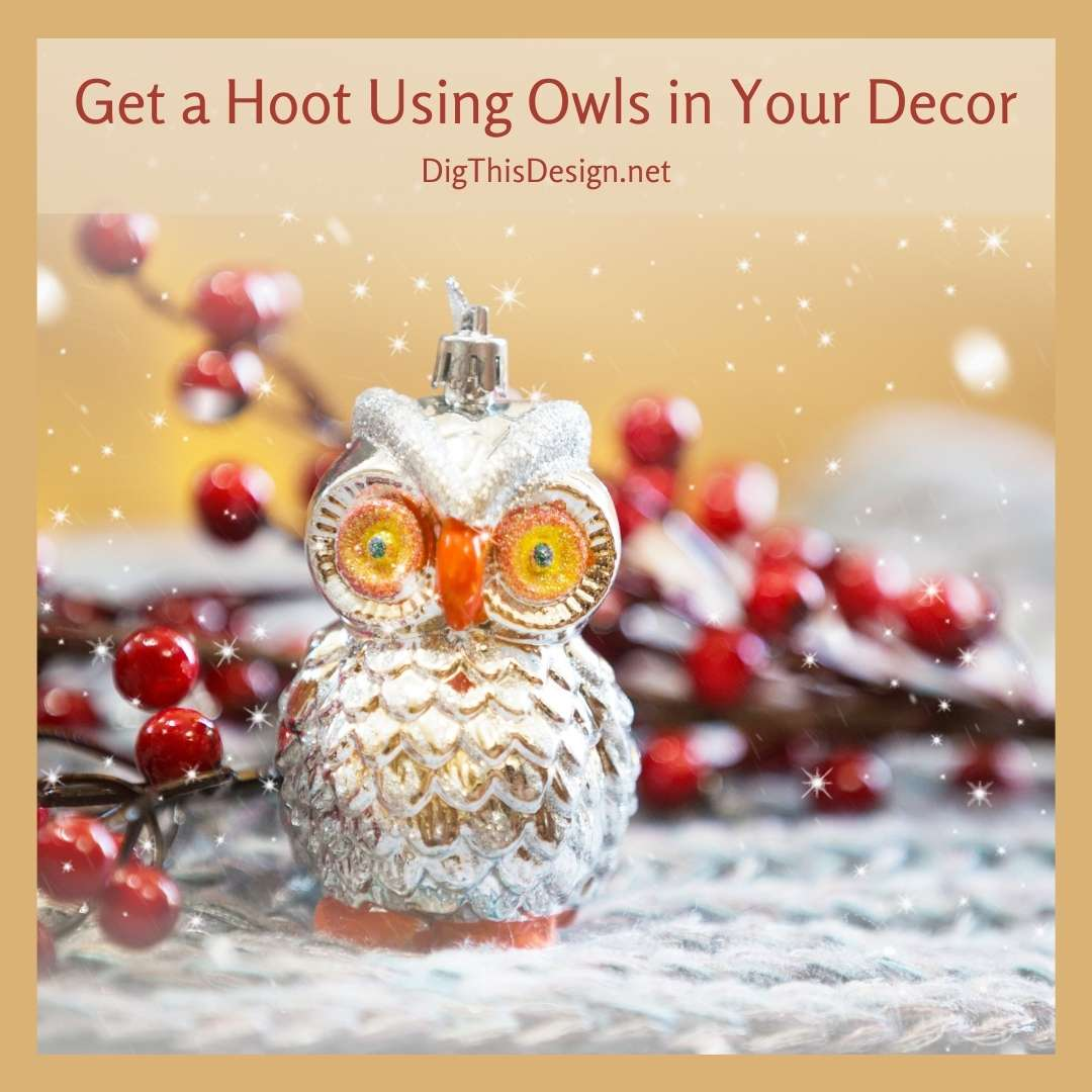 Get a Hoot Using Owls in Your Decor