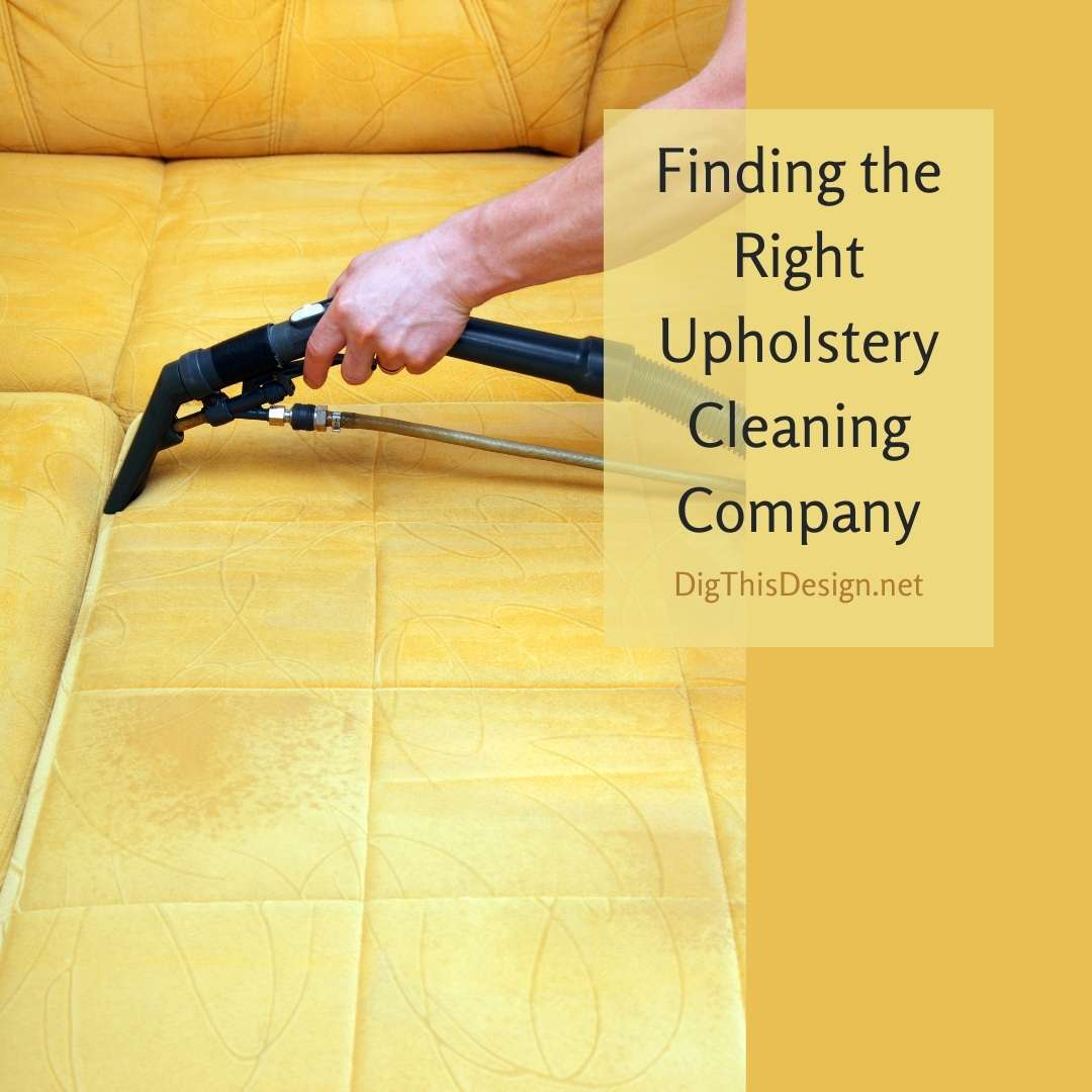 Finding the Right Upholstery Cleaning Company
