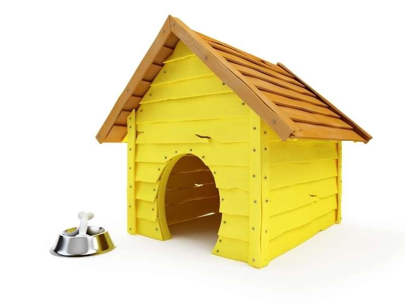 Dig Your Dog House Design