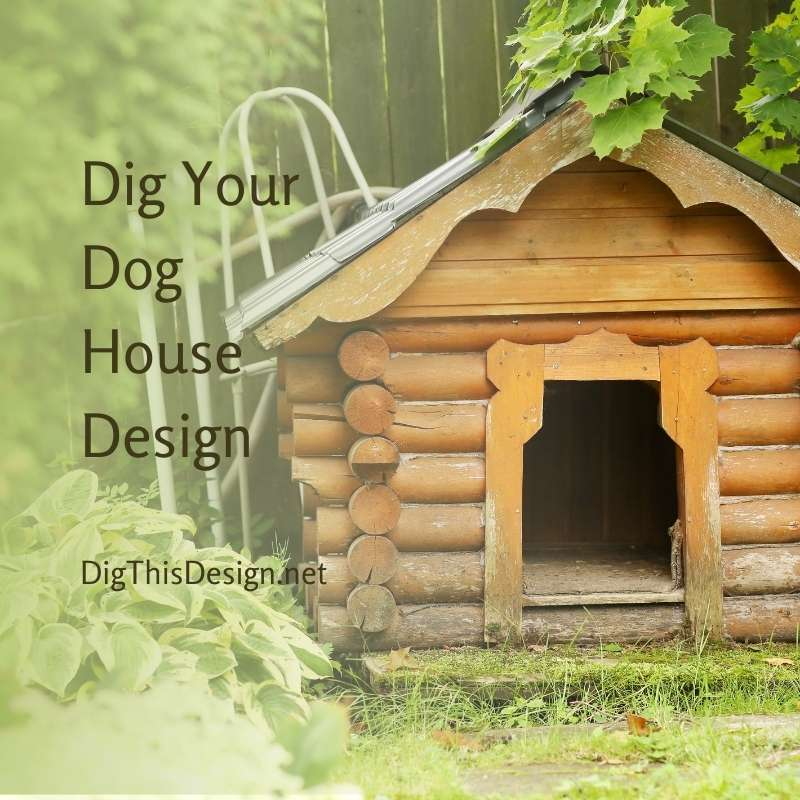 Dig Your Dog House Design