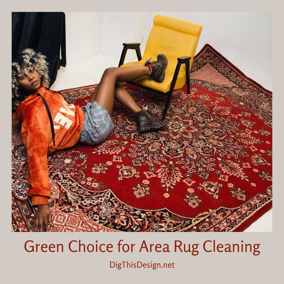 Green Choice for Area Rug Cleaning