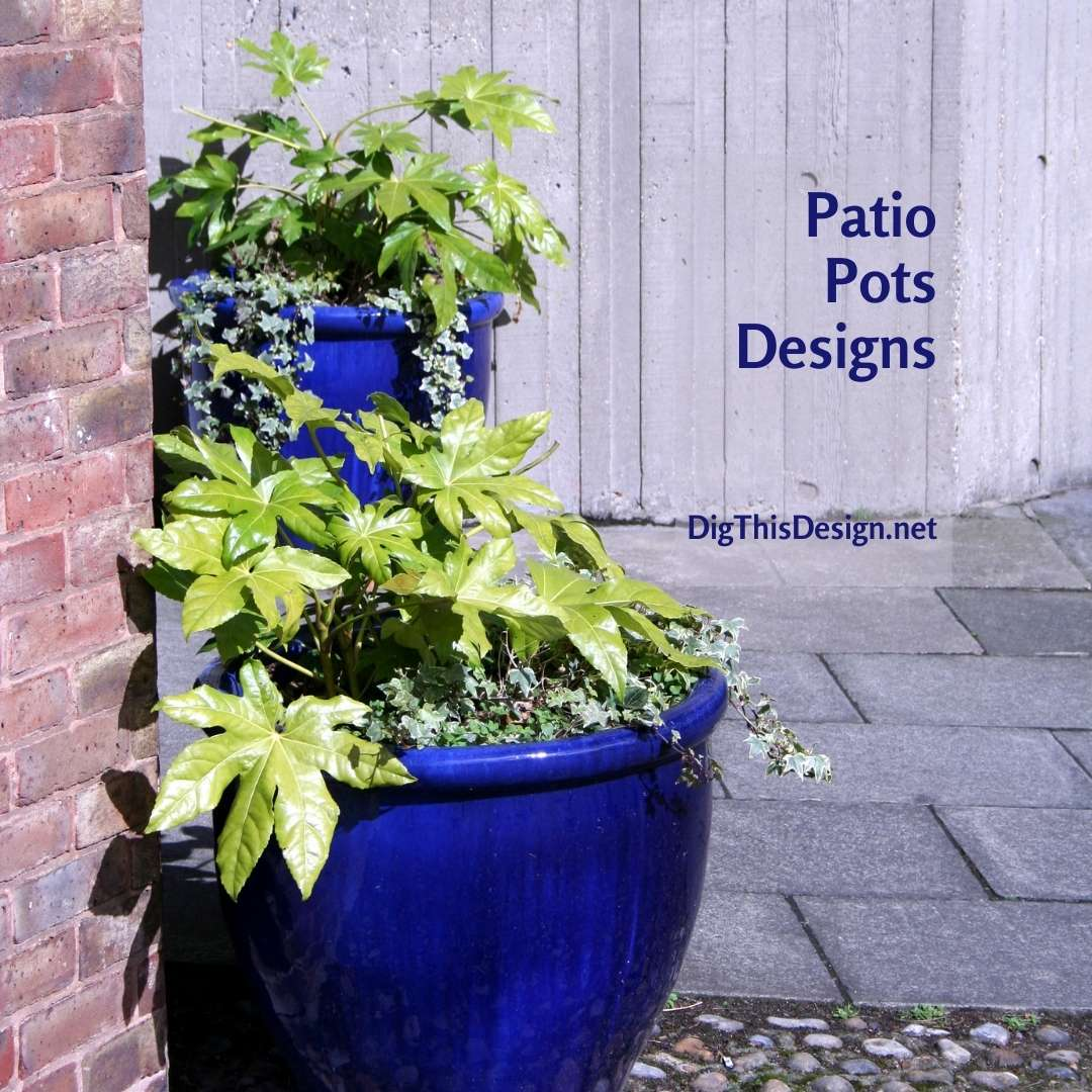Patio Pots Designs