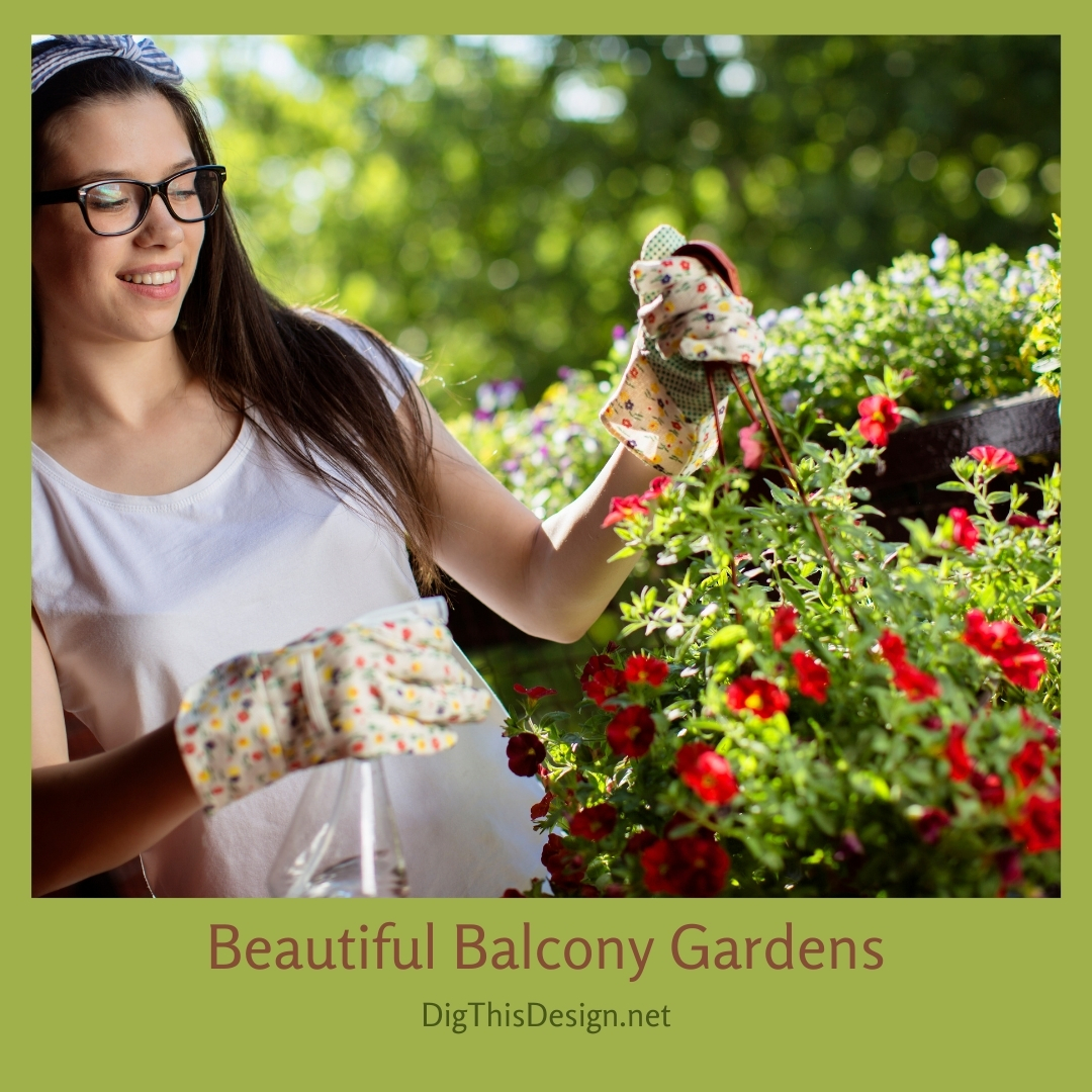 Beautiful Balcony Gardens
