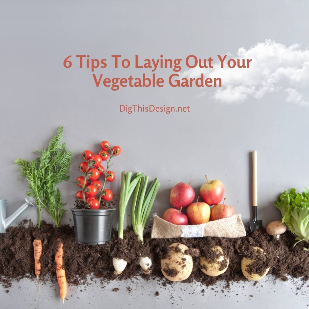 6 Tips To Laying Out Your Vegetable Garden