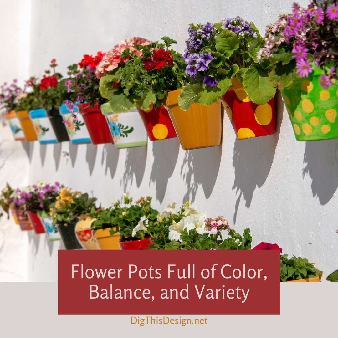 Flower Pots Full of Color, Balance, and Variety