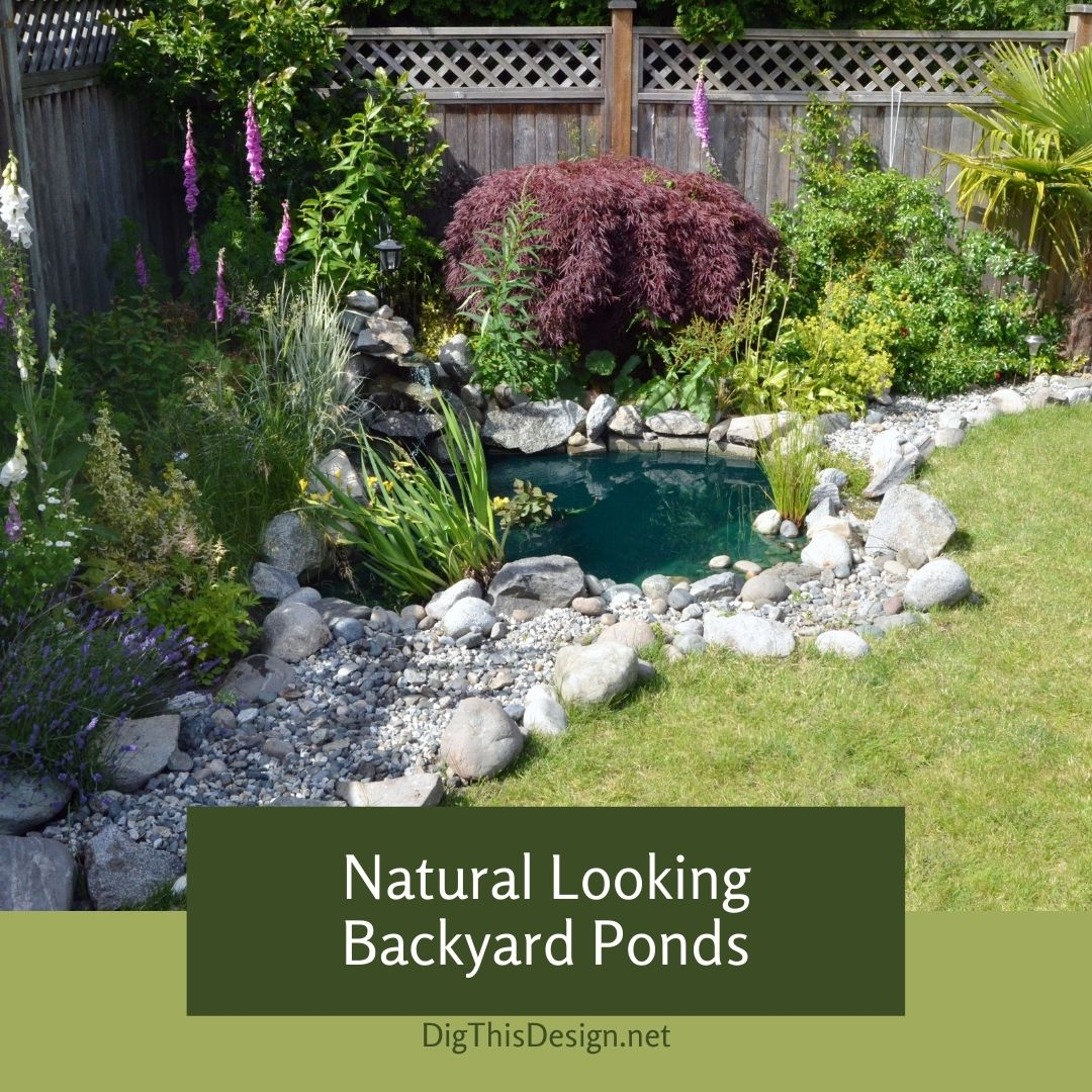 Natural Looking Backyard Ponds