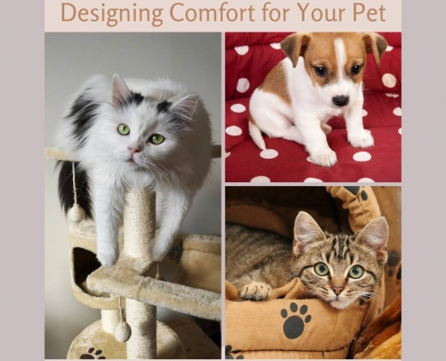 Designing Comfort for Your Pet