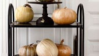Fall is here!  We think pumpkins and gourds are a fun and easy way to add fall inspiration to your décor. Metallic is the trend this season. Get a can […]