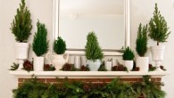 Christmas decorations on your fireplace mantle are visually and emotionally warming. They also make a personal statement about who lives in the home. Take a look at these beautiful ideas…replicate […]