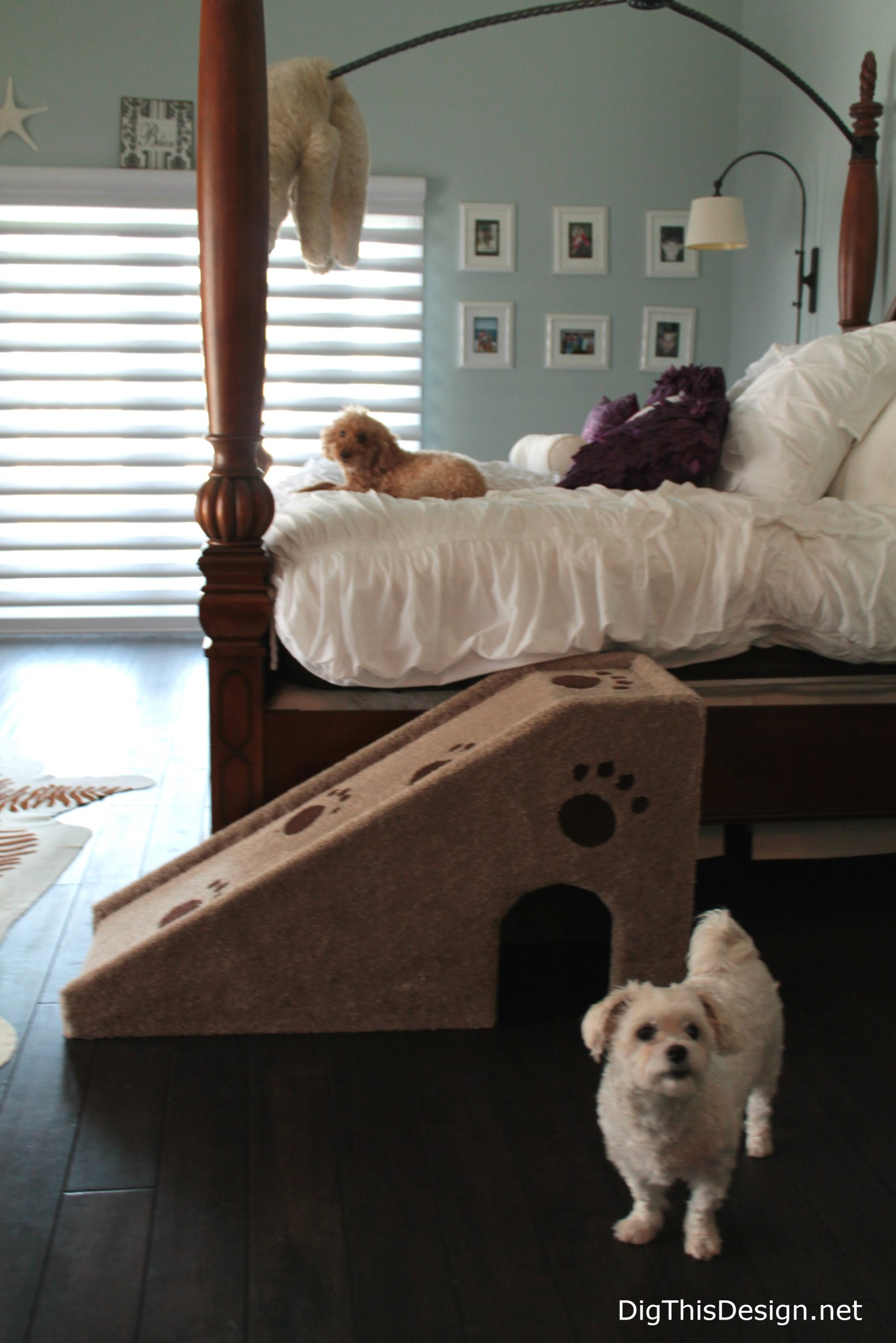 Room Décor That Intergrates Your Dogs Comforts; 10 Dog Bed Design Ideas