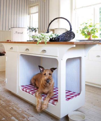 cute-idea-for-a-dog-bed
