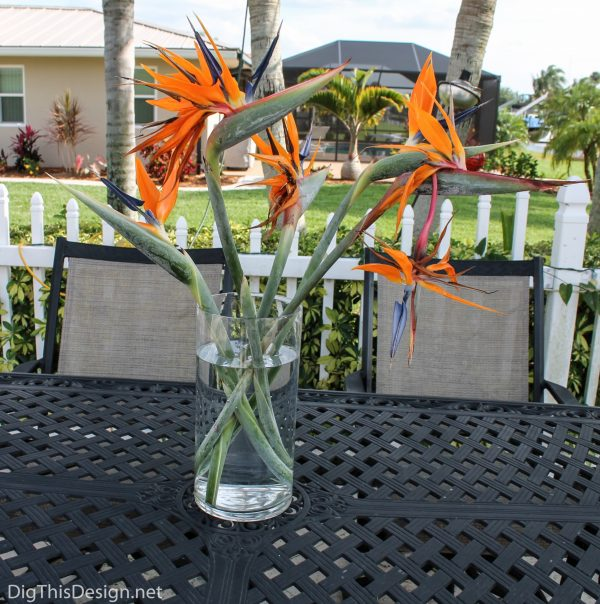 Flower décor showing birds of paradise in a tall vase.