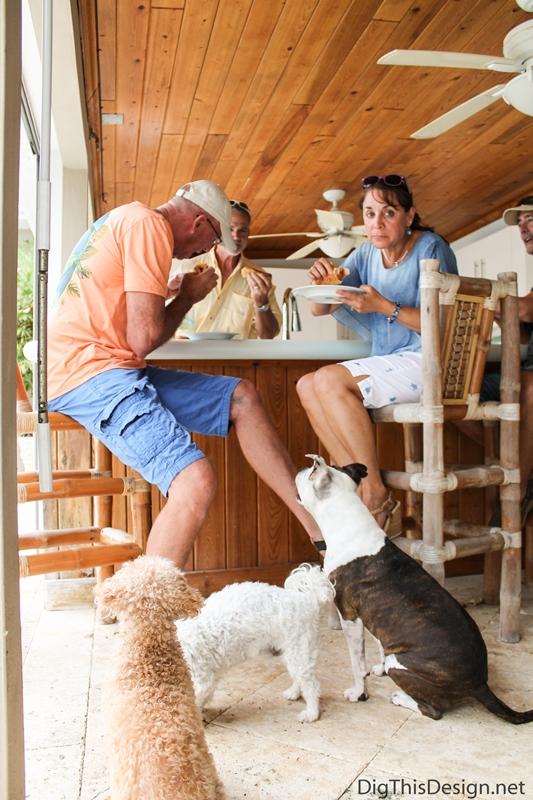 Dogs enjoying the healthy hot dog recipes.
