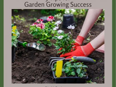 Garden Growing Success Starts From The Ground Up