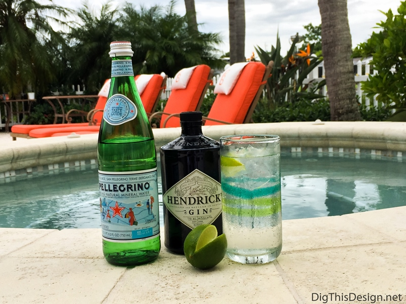 Labor Day Cocktails - Gin and Sparkling Water