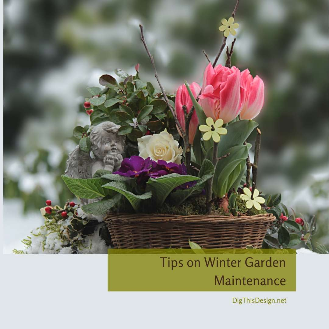 Tips on Winter Garden Maintenance