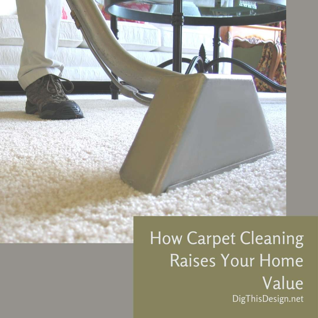 How Carpet Cleaning Raises Your Home Value