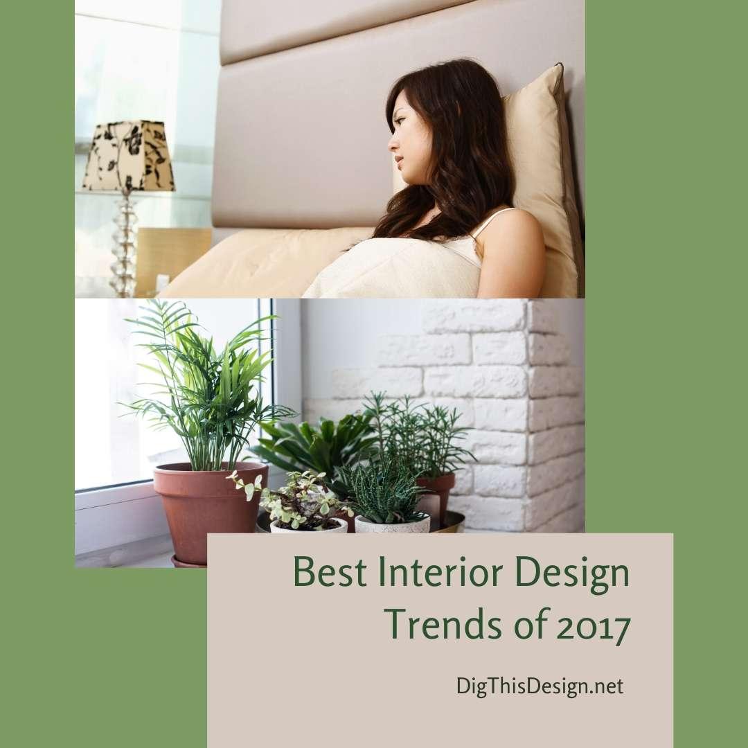 Best Interior Design Trends of 2017