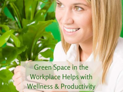 Green Space in the Workplace