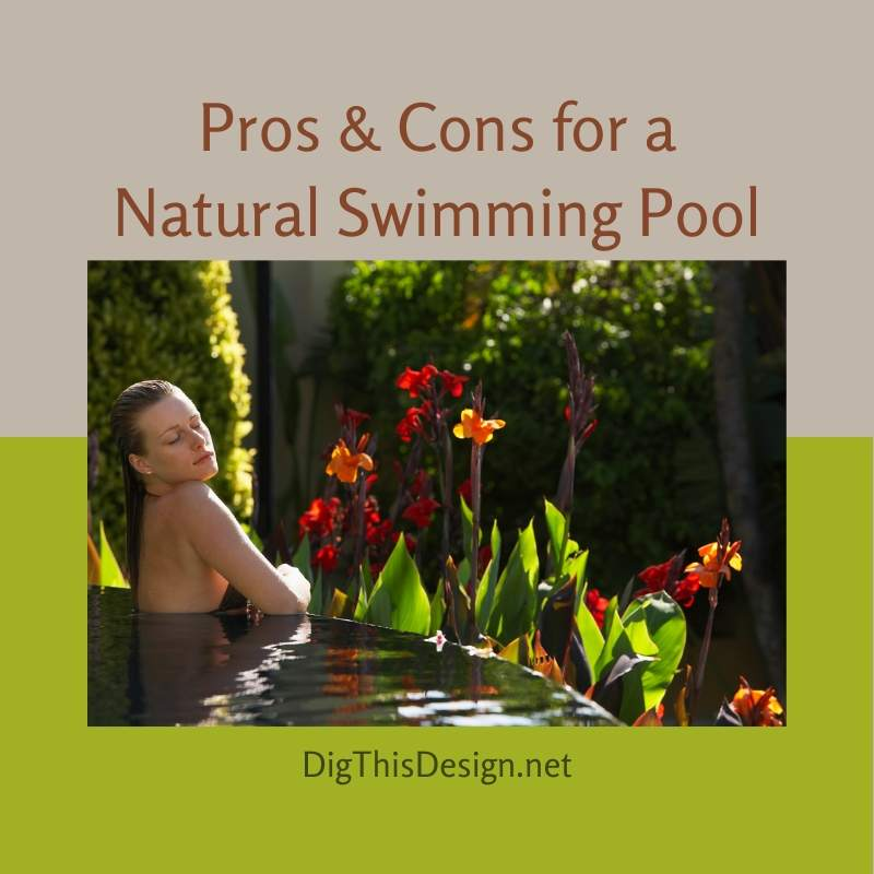 Pros & Cons for a Natural Swimming Pool