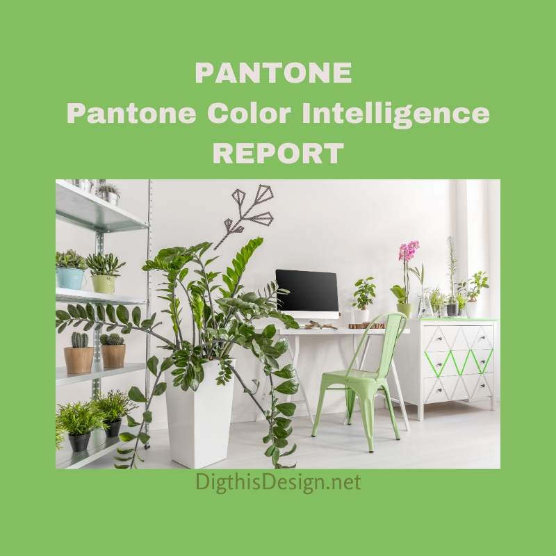 Pantone Color Intelligence Report