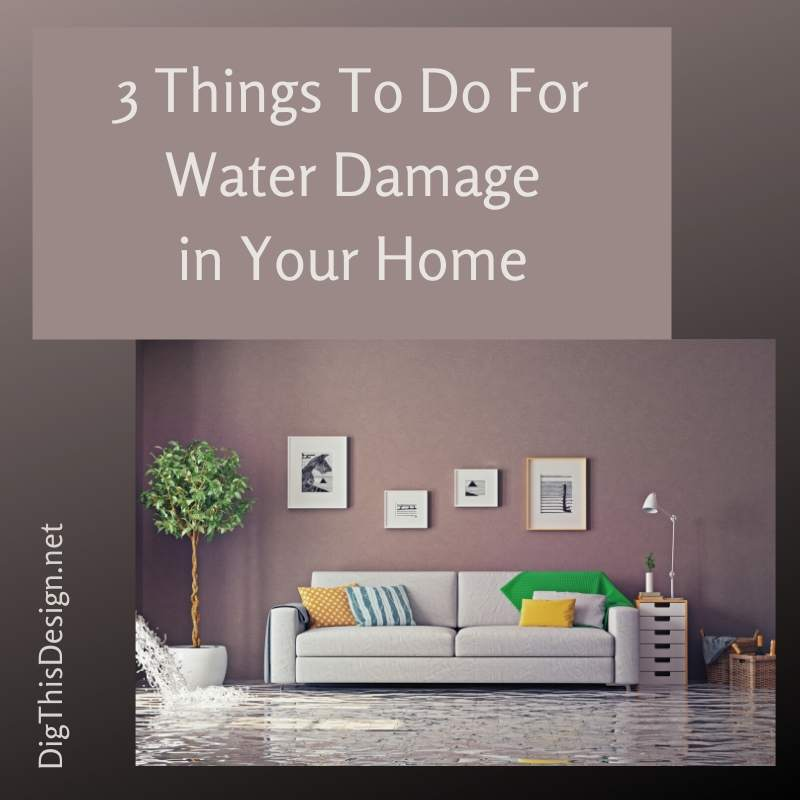 3 Things To Do For Water Damage in Your Home