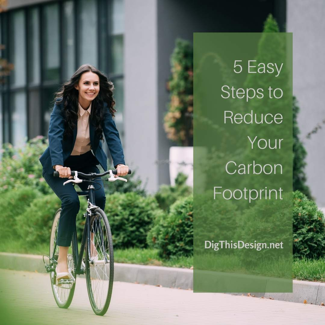 5 Easy Steps to Reduce Your Carbon Footprint
