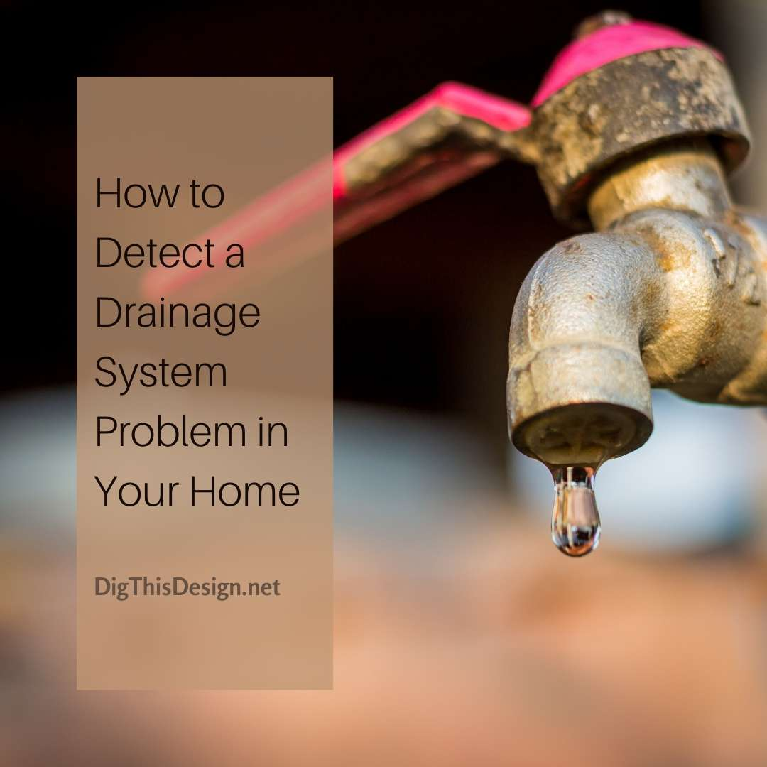 How to Detect a Drainage System Problem in Your Home