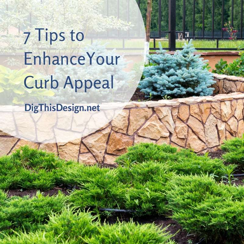 7 Landscaping Tips