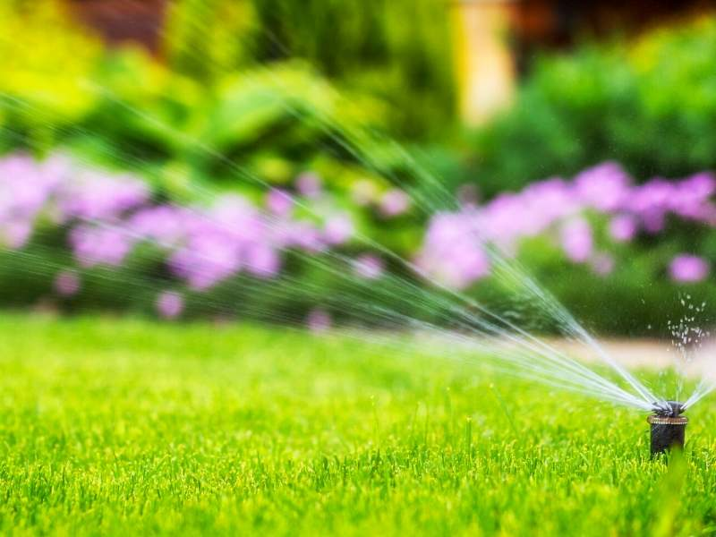 Be Mindful When Watering