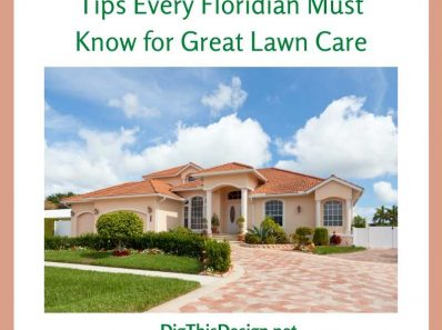 Tips Every Floridian Must Know for Great Lawn Care