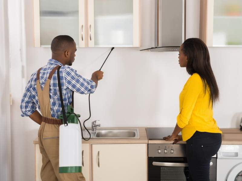 Hire Exterminators to Pest-Proof Your Home