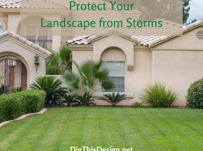 Protect Your Lawn & Landscape