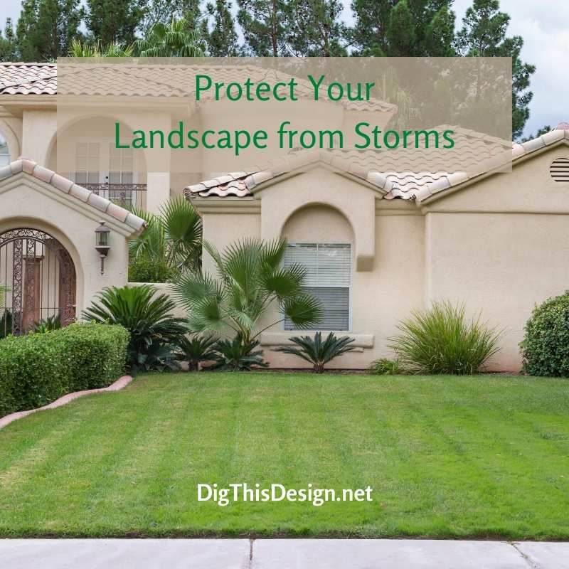 Protect Your Lawn & Landscape