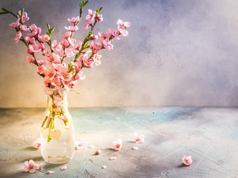 Brighten Your Home with Spring Decor Trends