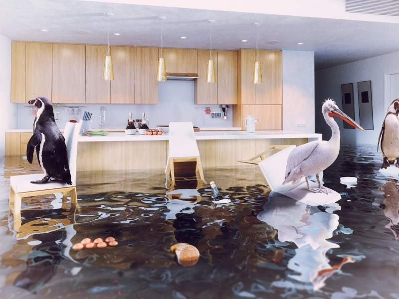 4 Ways to Avoid Kitchen Leaks and Floods