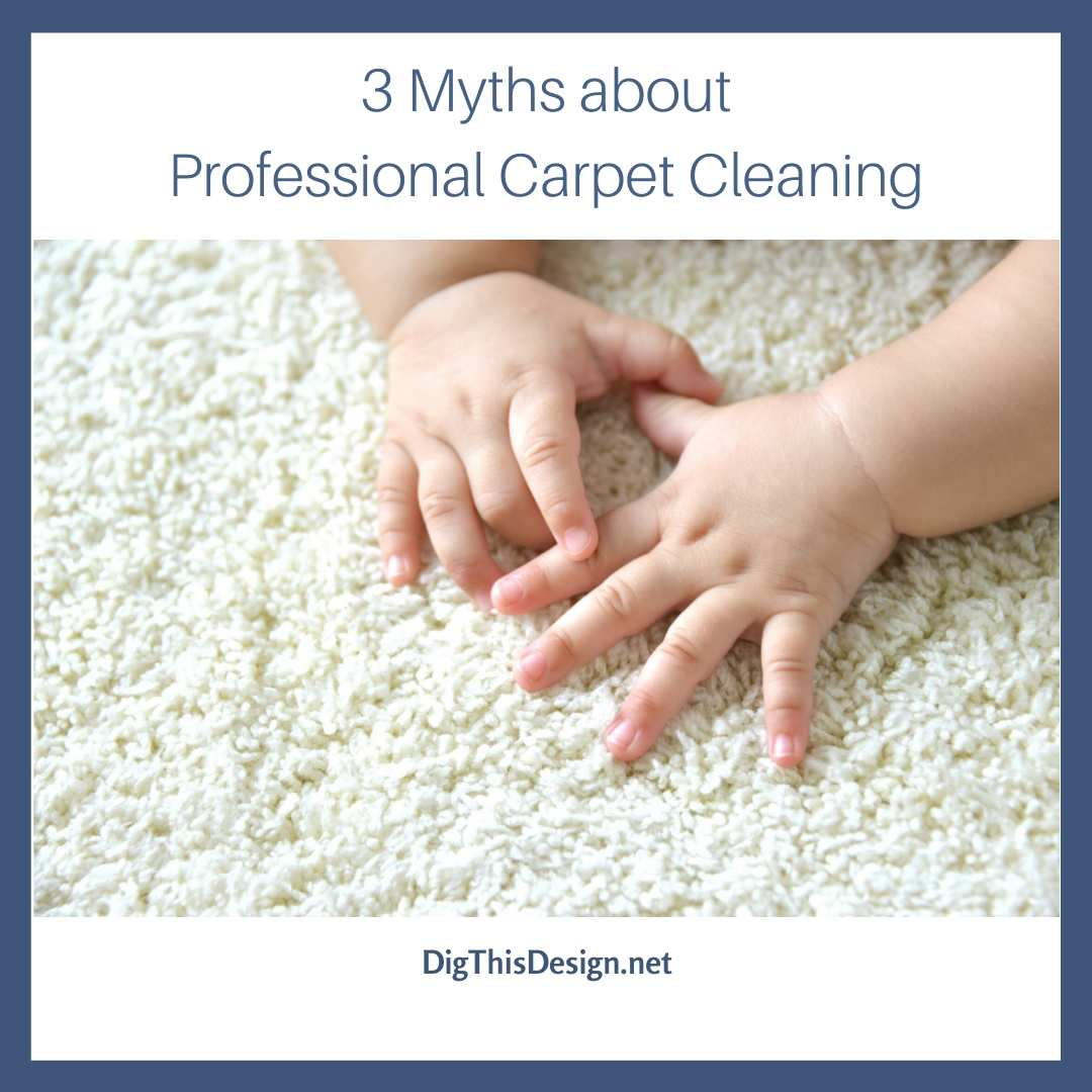 3 Myths about Professional Carpet Cleaning