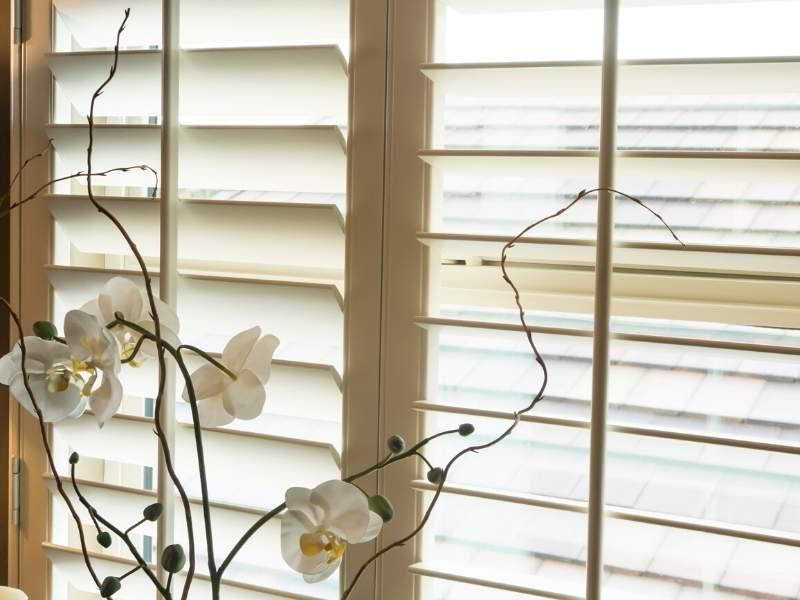 Elegant window treatments