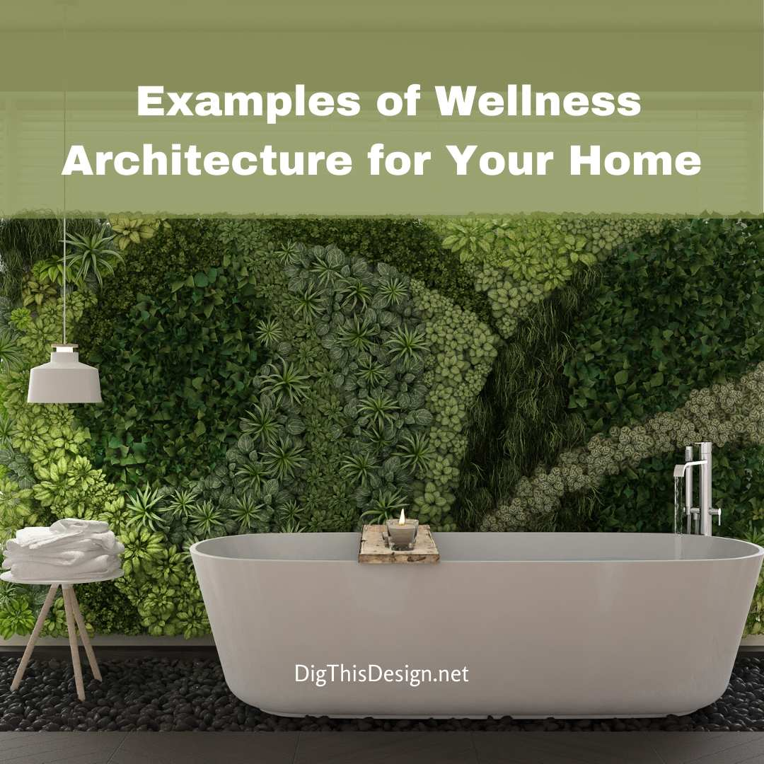 Wellness Architecture for Your Home