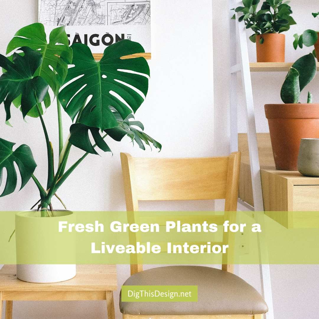 Fresh Green Plants for a Livable Design
