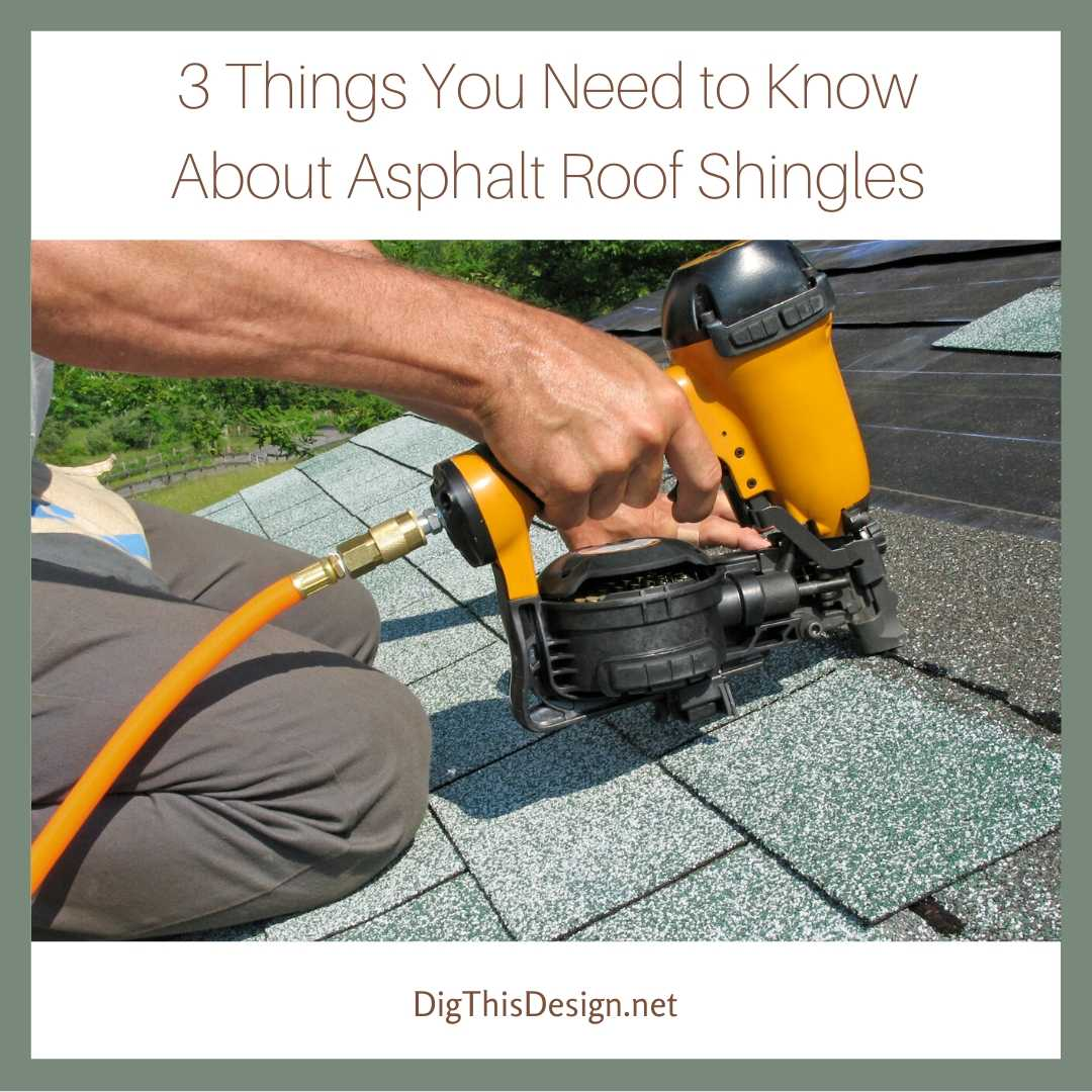3 Things You Need to Know About Asphalt Roof Shingles