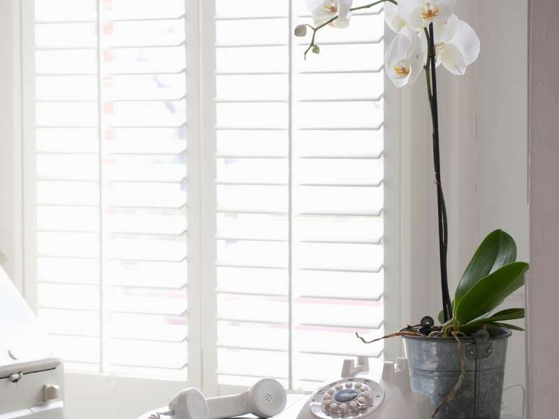 Window shutters home decor ideas