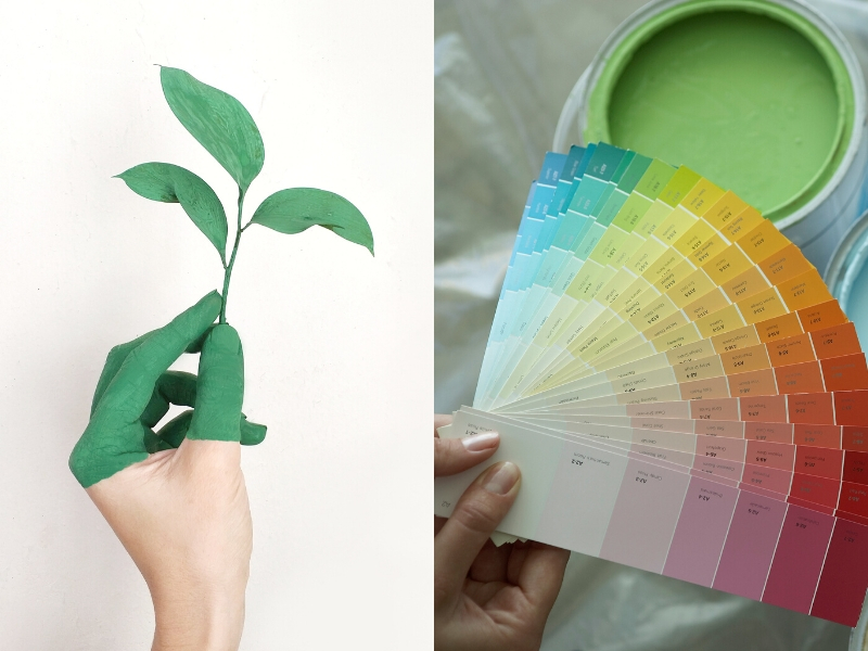 Green Paint for Sustainable Housing