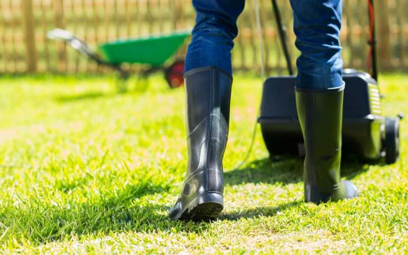 Lawn aerating in action