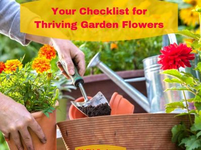 Your Checklist for Garden Flowers that Thrive All Summer Long