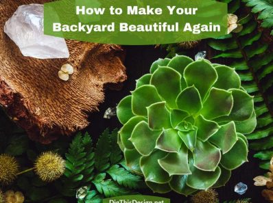 How To Make Your Unkempt Backyard Special Again
