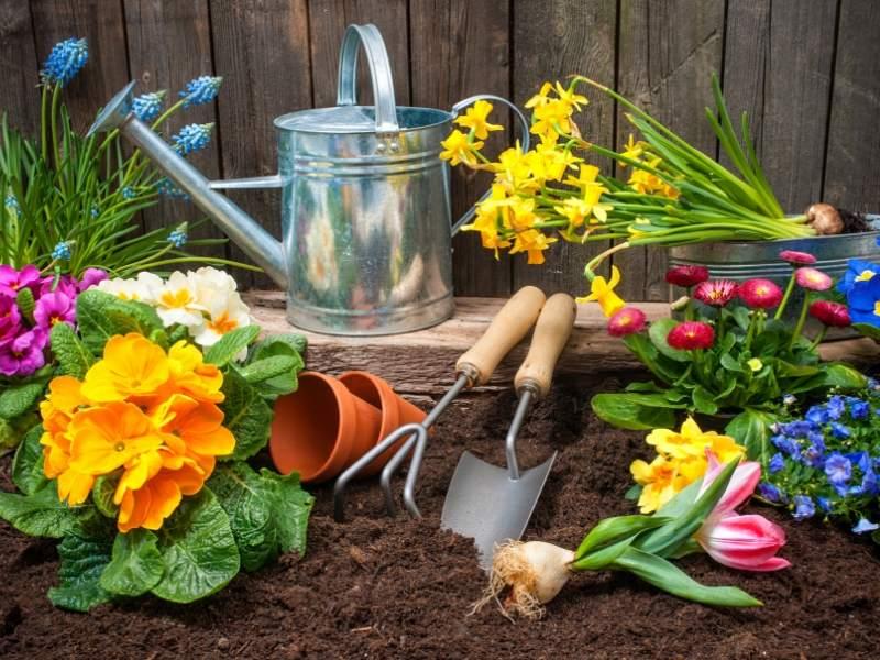 DIY Flower Gardening for your Landscape