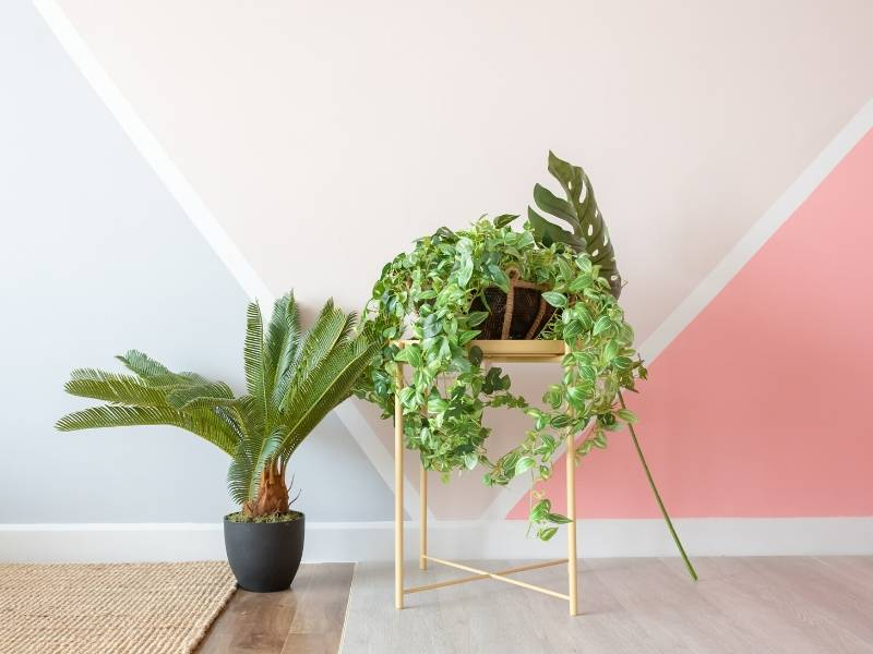 Selling Home Decor Tips with Luscious Greenery