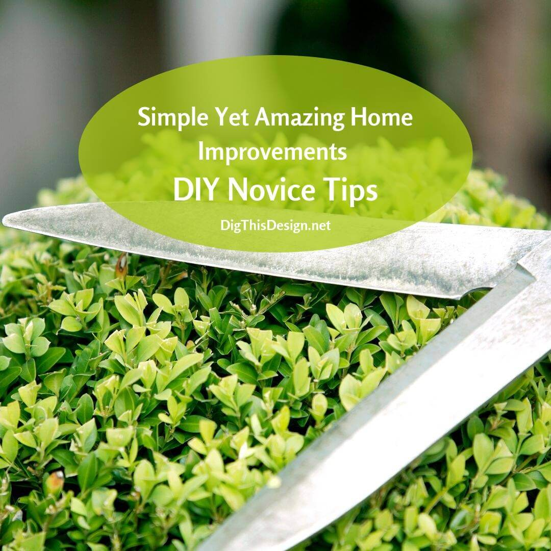 Simple Yet Amazing Home Improvements DIY Novice Tips